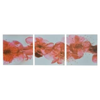 Cadre imprimé 3 photos - L. 150 cm - Fleurs rouges