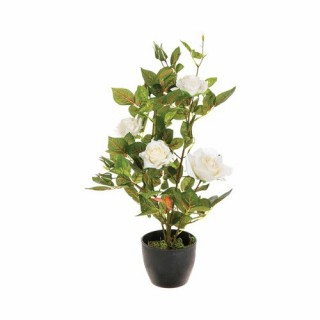 Rosier artificiel en pot - H. 50 cm - Blanc