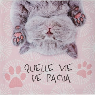 Toile imprimée Chat - 28 x 28 cm - Vie de pacha