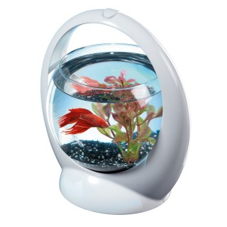 Aquarium Betta Ring Tetra - 1,8 L - Argent