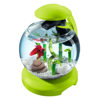 Aquarium Cascade Globe Tetra - 6,8 L - Vert