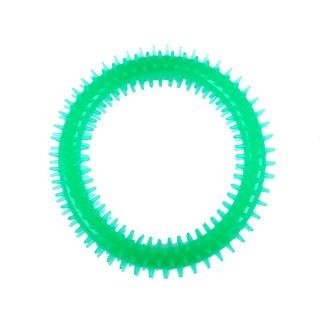 Jouet pour chien - Anneau dentaire Diam. 16 cm - Vert