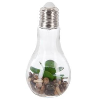 Décoration lumineuse Plante en ampoule - H. 18,5 cm - Grandes feuilles arrondies