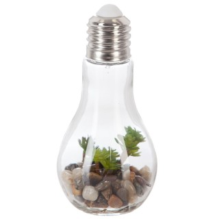 Décoration lumineuse Plante en ampoule - H. 18,5 cm - Petites feuilles arrondies