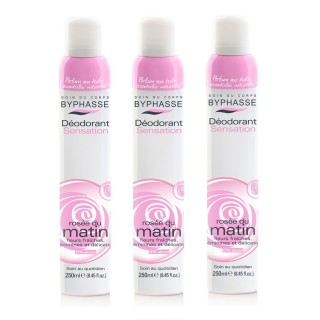 Lot de 3 - Déodorant Spray 24h - Rosé du matin - 250 ml