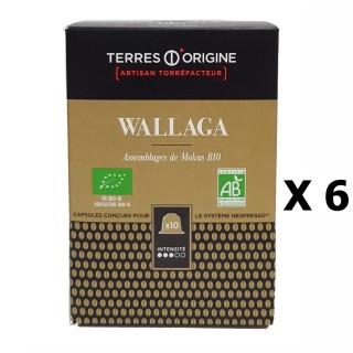 Lot 6x Capsules café Wallaga BIO intensité 3/5 - Terres d'Origine - Boîte 55g soit 10 capsules conçues pour le système Nespresso
